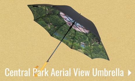 Aerial Umbrella
